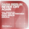 Cover of the album Never Cry Again (Remixes)