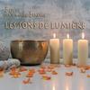 Cover of the album Les sons de lumière (Best of)