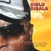 Couverture de l'album Evolution (New Style)