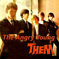 Cover of the track The Angry Young Them
