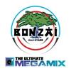 Couverture de l'album The Ultimate Megamix