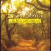 Couverture du titre Summer Star
