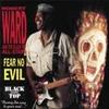 Couverture de l'album Fear No Evil