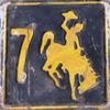 Couverture de l'album Let the 7Horse Run