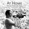 Couverture de l'album At Home