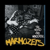 Cover of the album The Weird and Wonderful Marmozets