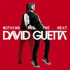 Couverture de l'album Nothing but the Beat
