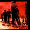 Cover of the album Alien Road