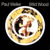 Cover of the album Wild Wood