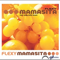 Cover of the track Mamasita (Radio Edit) - Single