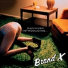 Cover of the album MacRocosm - Introducing...Brand X