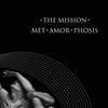 Cover of the album Met-Amor-Phosis - Single