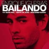 Cover of the track Bailando