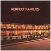 Couverture de l'album Perfect Families