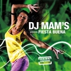 Cover of the track Fiesta Buena