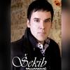Couverture de l'album Pozelim (Serbian Music)