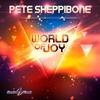 Couverture de l'album World of Joy (Remixes) - EP
