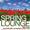 Cover of the album Spring Lounge 2010