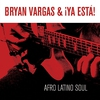 Couverture de l'album Afro Latino Soul