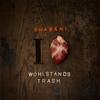 Cover of the album I Love Wohlstandstrash