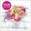 Couverture de l'album Plum Slump
