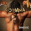Couverture de l'album Go Mama