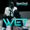 Couverture de l'album Wet - Single