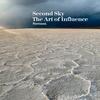 Couverture de l'album The Art of Influence Remixed