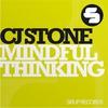 Couverture de l'album Mindful Thinking (Remixes) [feat. Lyck]