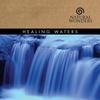 Couverture de l'album Healing Waters