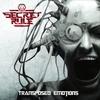 Couverture de l'album Transposed Emotions