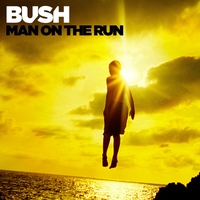 Cover of the track Man on the Run (Deluxe Version)