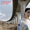 Cover of the album Polaar