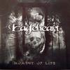Couverture de l'album Moment of Life