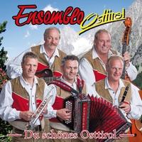 Cover of the track Ensemble Osttirol