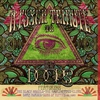 Couverture de l'album A Psych Tribute to the Doors
