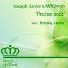 Cover of the album Praise Scat