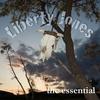 Couverture de l'album The Essential Liberty Jones