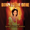 Couverture de l'album Spread Love Like Wildfire