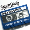 Couverture de l'album Pay Ya Dues (Snoop Dogg G-Mix) - Single