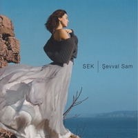 Cover of the track Sek