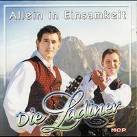 Cover of the track Allein in Einsamkeit