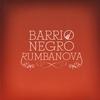 Couverture de l'album Rumbanova
