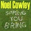 Couverture de l'album Spring You Bring - Single