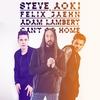 Couverture du titre Can't Go Home (feat. Adam Lambert)