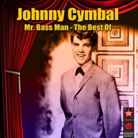 Cover of the track Mr. Bass Man - The Best Of