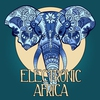 Cover of the album Electronic Africa, Vol. 1 (African Flavoured Lounge Tunes)