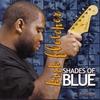 Couverture de l'album Shades of Blue