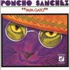 Couverture de l'album Papá Gato