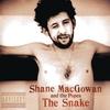 Couverture de l'album The Snake